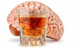 alcohol in the brain